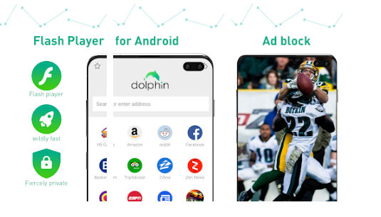 Which Android Browser Supports Flash
